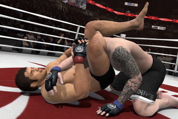 EA Sports MMA - Mixed Martial Arts Review